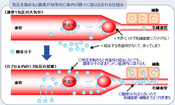 溶解性酸素